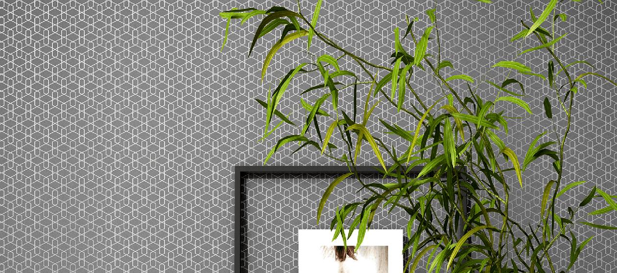 Wallpaper Installation & Removal